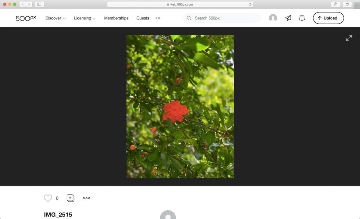 500px, a popular image sharing website