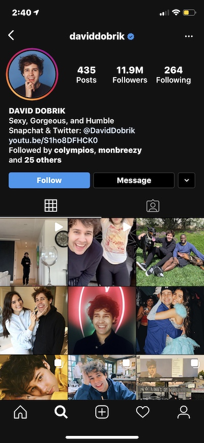 Funny Instagram bio example by @daviddobrik