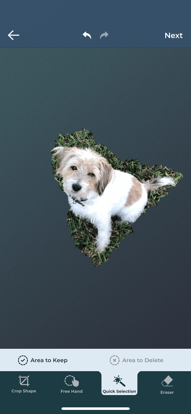 Using an app to select and remove the background of a photo