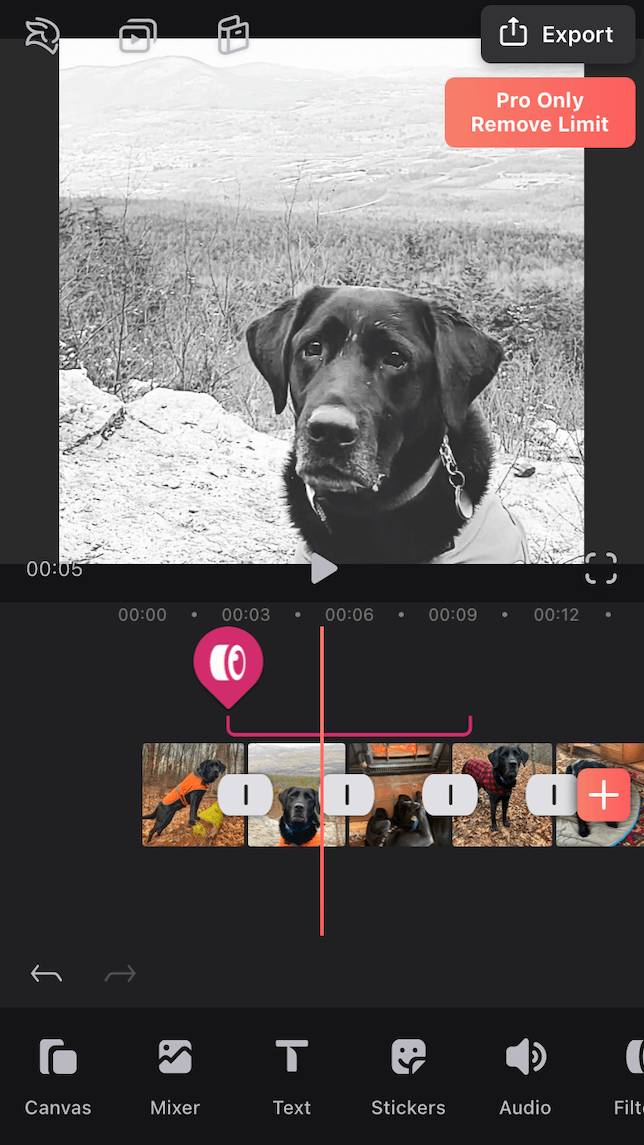 the editing screen on the Videoleap app