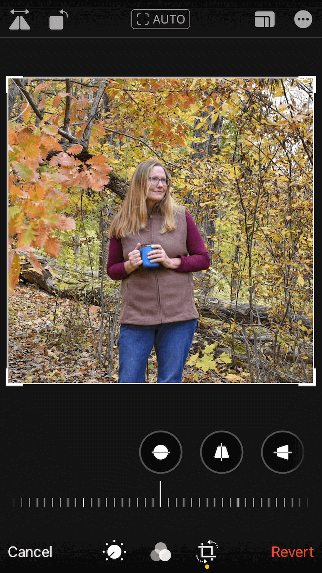A screenshot showing how to flip a photo using the Photos app