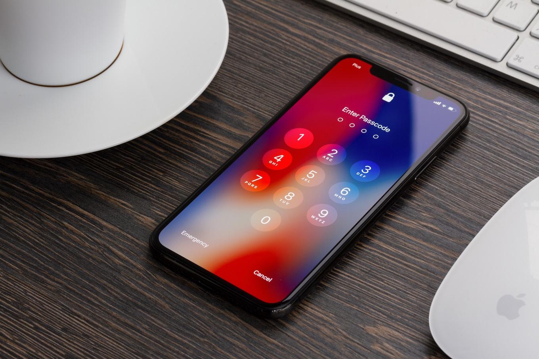 The iPhone X display