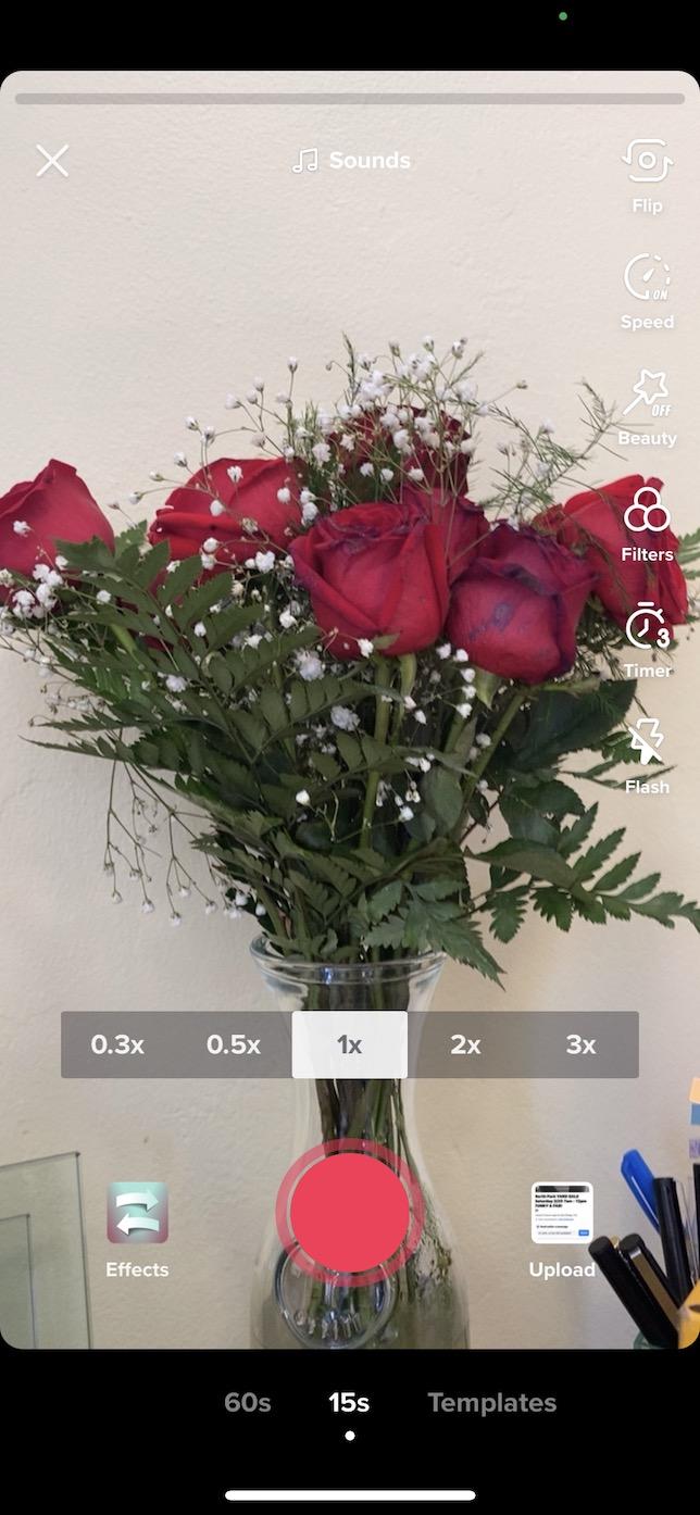 Screenshot showing Inverted Filter on TikTok.