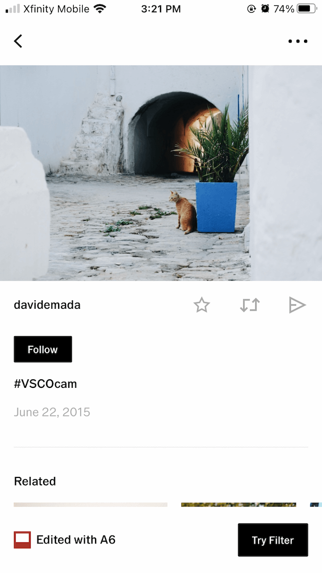 A photo featuring a small ginger cat sitting in a doorway — edited using the VSCO app.