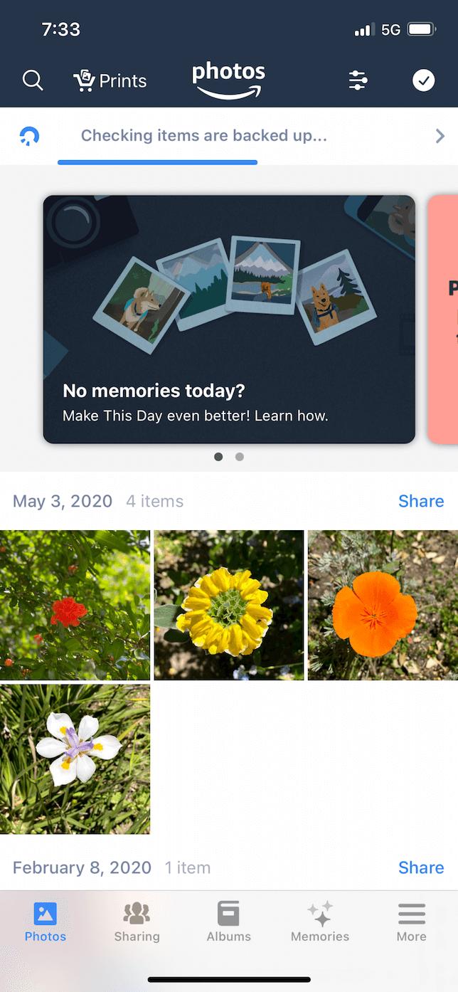 Screenshot of Amazon Photos.