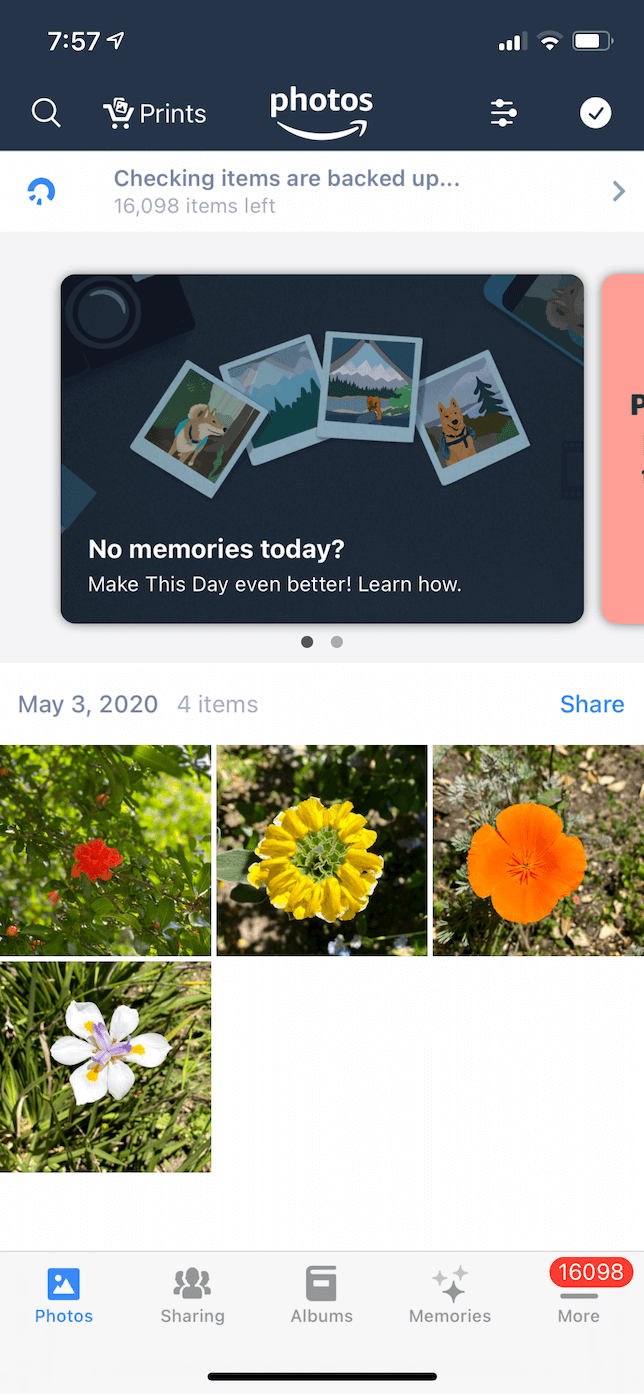Screenshot of Amazon Photos iOS app.