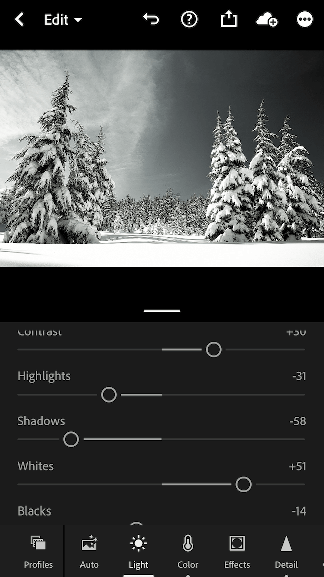 An after screenshot showing how to make a photo black and white in Lightroom.