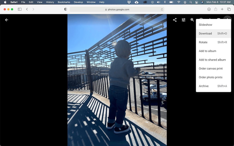 Screenshot of Google Photos in Safari on macOS.