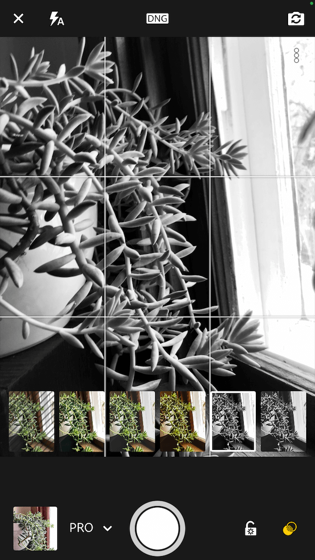 A screenshot showing a monochrome filter in Lightroom's in-app camera.