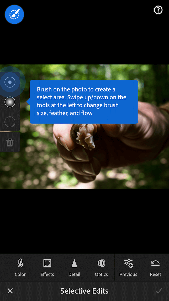 A screenshot showing the different options for selective editing in Lightroom mobile.