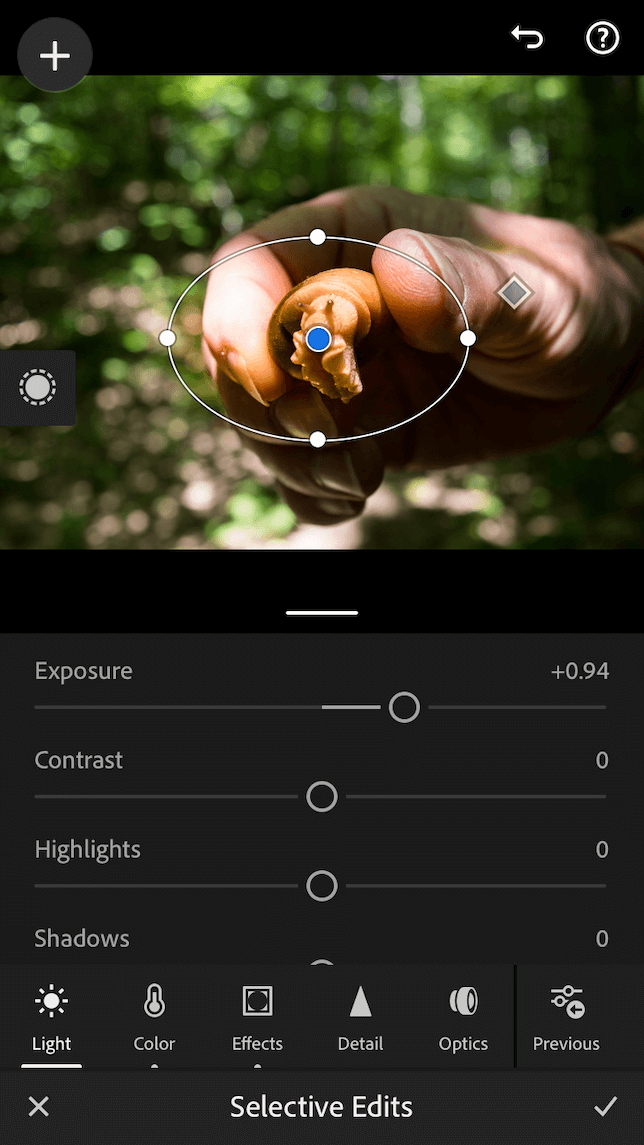 A screenshot of the radial selection tool in Lightroom mobile.