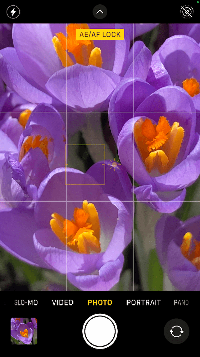 A screenshot showing how to capture close-ups with an iPhone camera using the digital zoom feature.
