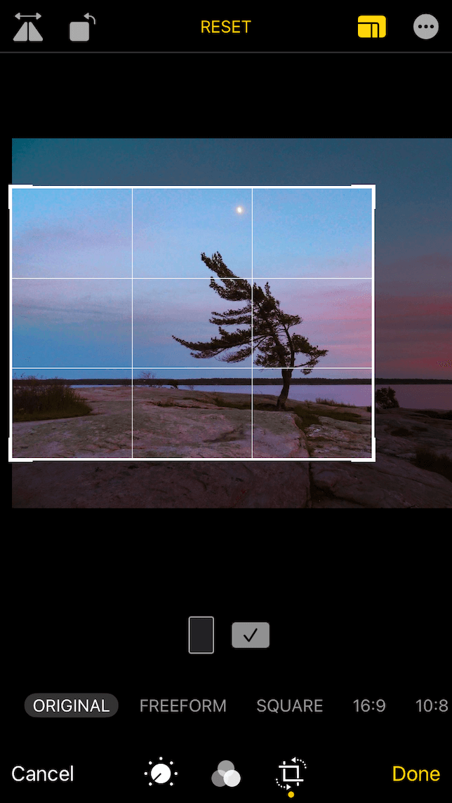 A screenshot showing a photo after it has been cropped to the rule of thirds.