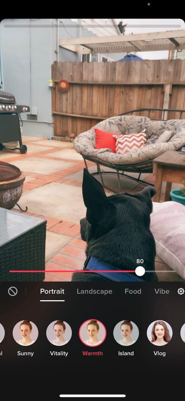 Second screenshot showing how to add a TikTok filter.