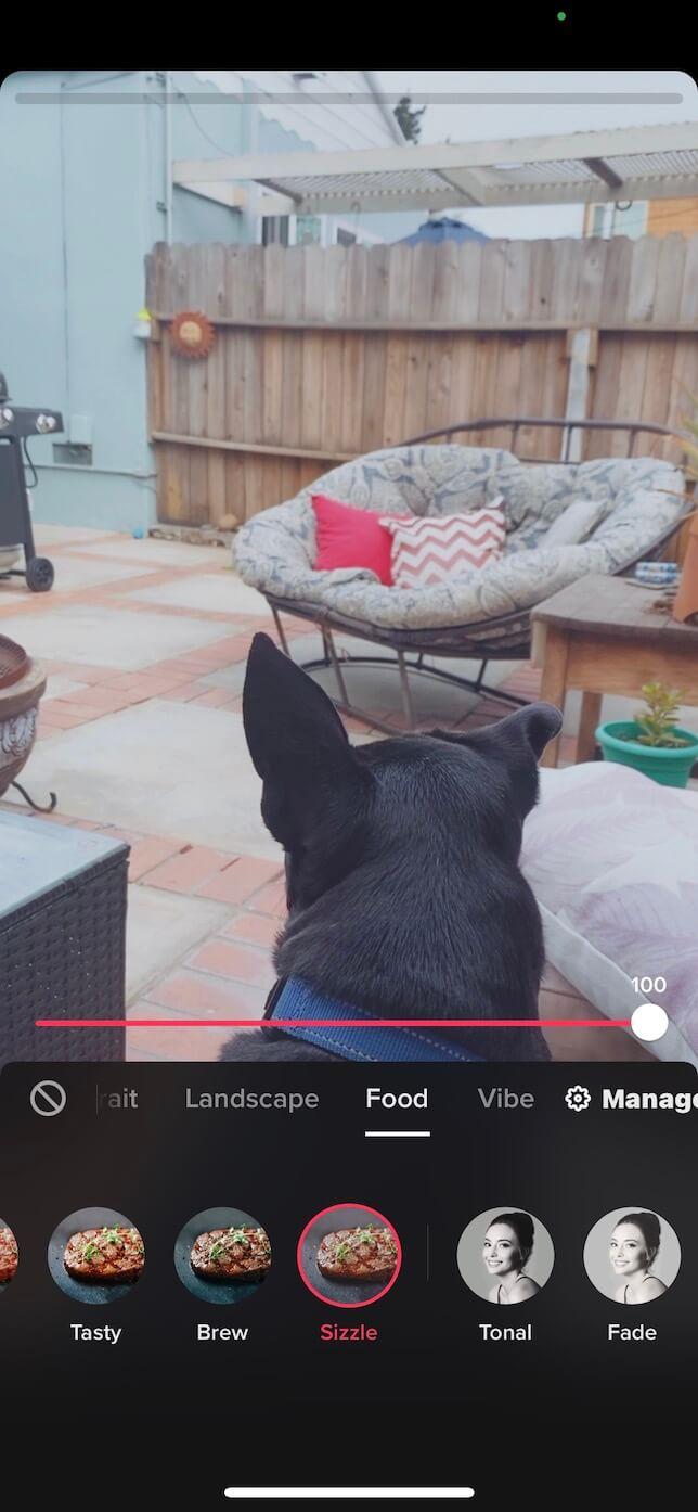 Screenshot showing how to add a TikTok filter.