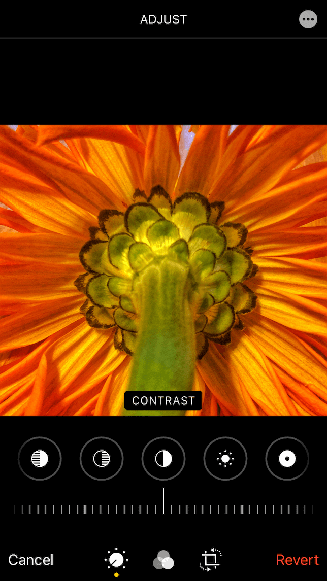 A screenshot showing the Contrast slider on the iPhone Photos app.