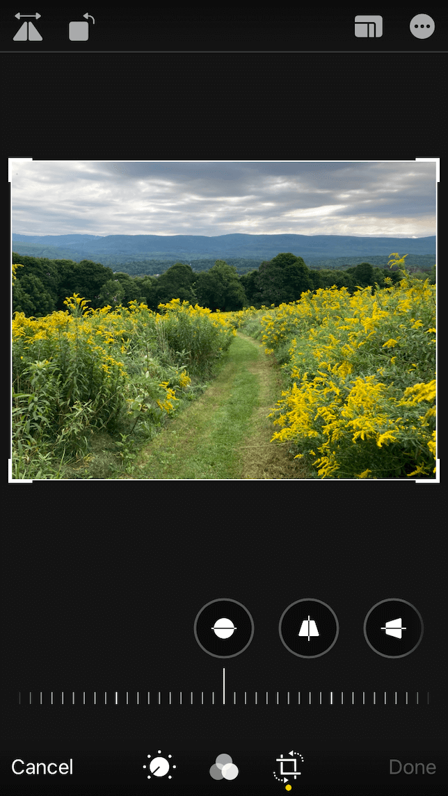 A screenshot showing how to crop a photo for printing in standard photo print sizes.