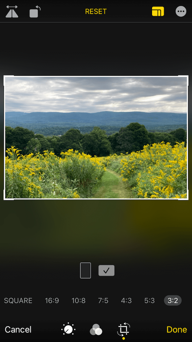 A screenshot showing the cropping ratios on the editing screen of the Photos app on iPhone.